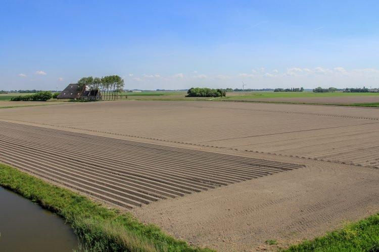 Pingjum land boerderij