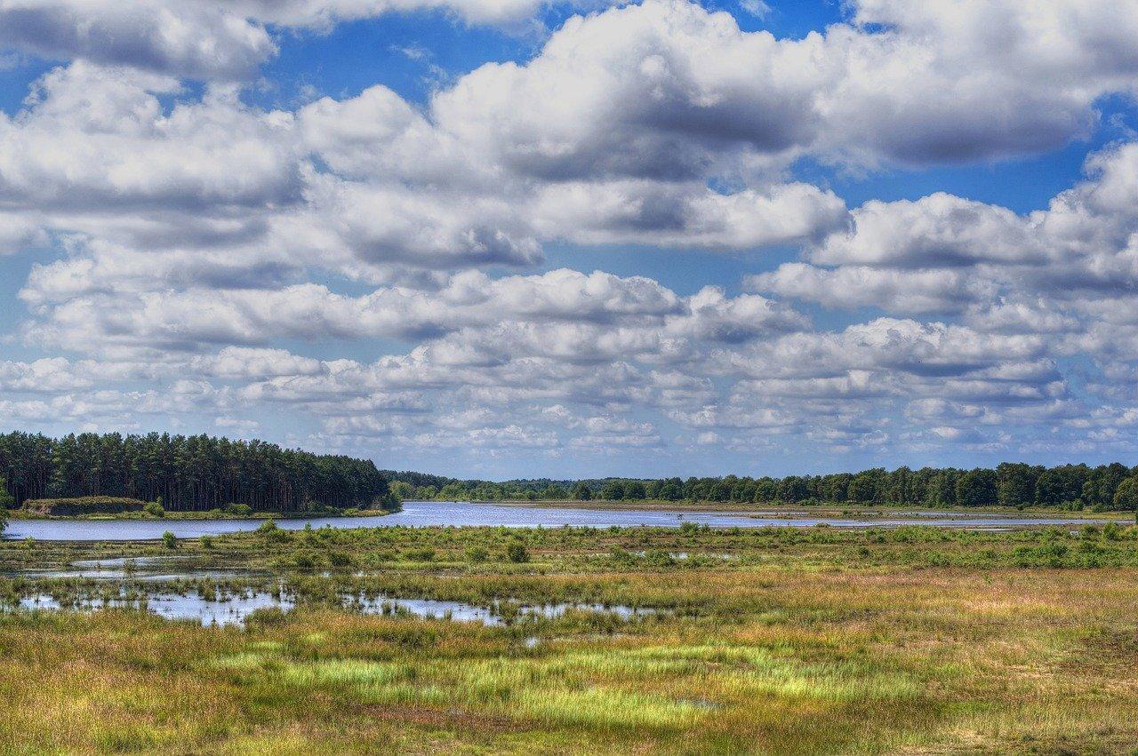Heidelandschap Drenthe